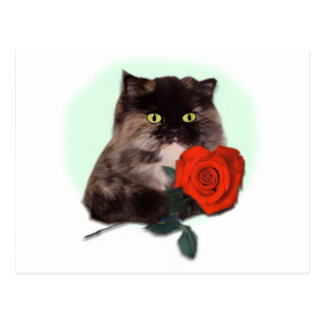 Persian Kitty with Rose Gifts and Apparel Postcard
