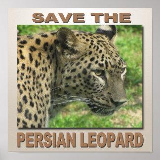 Persian Leopard Print