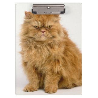 Persian Longhair Cat Clipboard