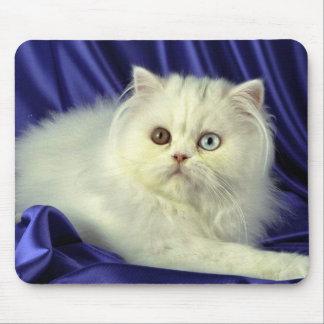 Persian, odd-eyed white mousepad