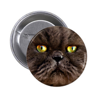 Persian Pussy 2 Inch Round Button