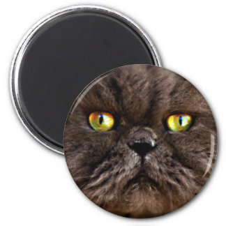 Persian Pussy 2 Inch Round Magnet