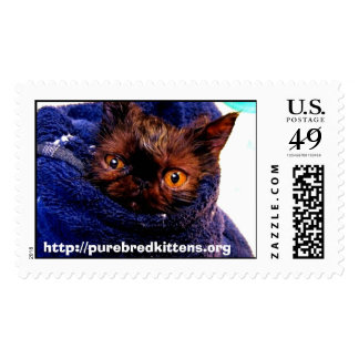 Persian Rescue Stamp