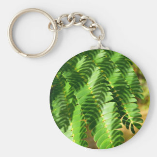 Persian Silk Tree Leaves Key Ring
