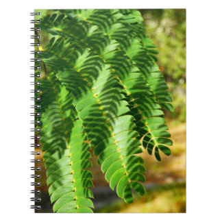 Persian Silk Tree Leaves Photo Notebook