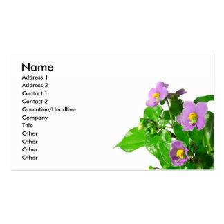 Persian violets business card