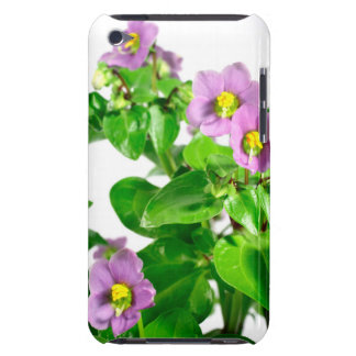 Persian violets iPod Case-Mate cases