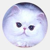 Persian White Cat Kitten Kitty Classic Round Sticker