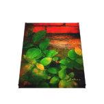 Persianas de color impresión en lienzo estirada