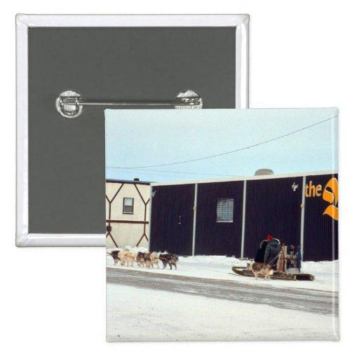 Persiga al equipo en la bahía, Churchill, Manitoba Pins