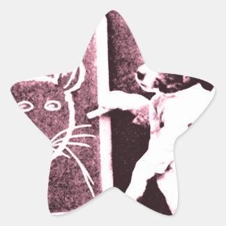 persiga el dibujo qué mira para ser un ratón pegatina en forma de estrella