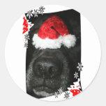 Persiga el gorra del navidad en la nariz, colmillo pegatina redonda