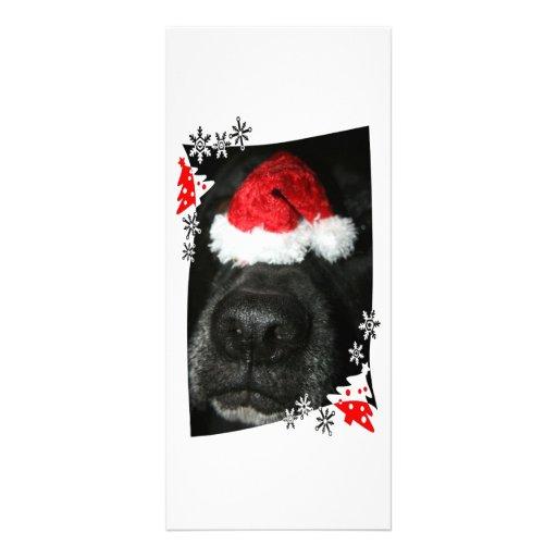 Persiga el gorra del navidad en la nariz, colmillo diseño de tarjeta publicitaria