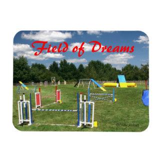 Persiga el imán de los sueños del curso de la agil