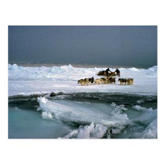 Persiga el viaje en el hielo, isla de Ellesmere, Postales