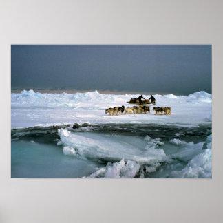 Persiga el viaje en el hielo, isla de Ellesmere, T Póster