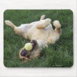 Persiga la colocación upside-down en hierba con la tapetes de ratones
