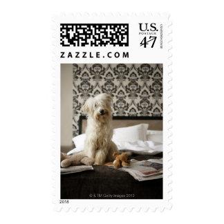 Persiga sentarse en cama con los juguetes y el timbres postales
