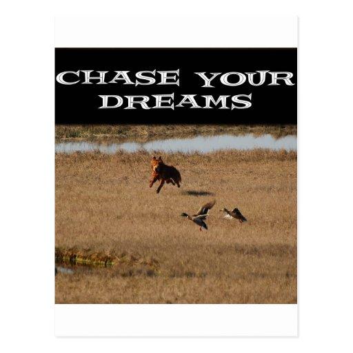 Persiga sus sueños tarjeta postal