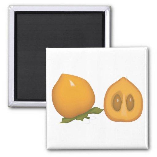 persimmon 2 inch square magnet
