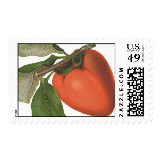 Persimmon Stamp
