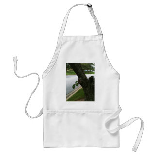 Persistence 2; tree grows new branch adult apron