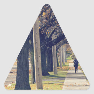 Person Walking Down Residential Street Triangle Sticker