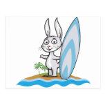 Persona que practica surf del conejito tarjeta postal