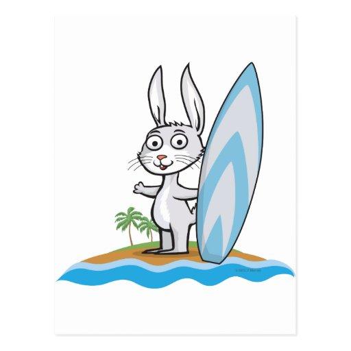 Persona que practica surf del conejito tarjetas postales