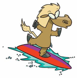 persona que practica surf divertida linda tonta de escultura fotografica