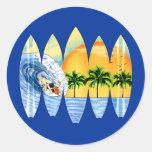 Persona que practica surf y tablas hawaianas etiquetas