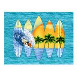 Persona que practica surf y tablas hawaianas tarjetas postales
