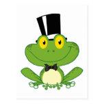Personaje de dibujos animados de la rana del novio postales