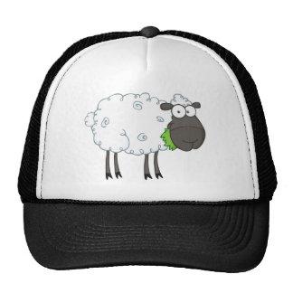 Personaje de dibujos animados de las ovejas negras gorro