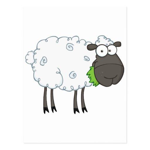 Personaje de dibujos animados de las ovejas negras tarjeta postal