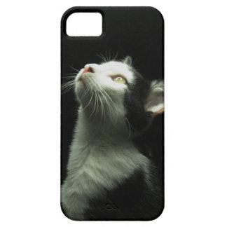 Personal Cat Phone Case
