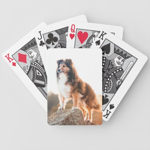 Personal Creations Collie Puppy Playing Cards