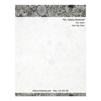 Personal Granite Rock Texture with Return Address Letterhead