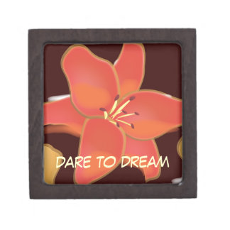 Personal Growth: Dare to Dream Jewelry Box