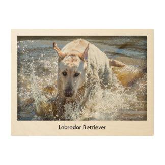 Personalice:  Amarillee la fotografía del mascota Impresión En Madera