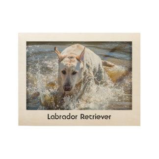 Personalice:  Amarillee la fotografía del mascota Póster De Madera