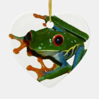 Personalice la rana observada rojo de Costa Rica