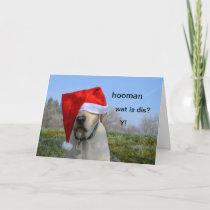 Personalised Pet Photo Christmas Card