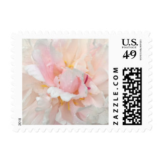Personalizable Blush Pink Peony Postage Stamps