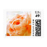 Personalizable Dark Peach Peony Postage Stamps