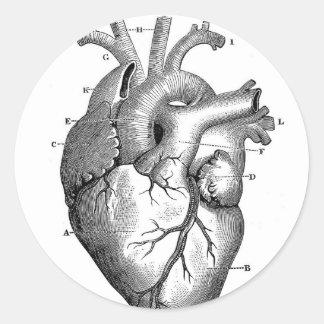 Personalizable de la anatomía el del corazón del etiquetas redondas