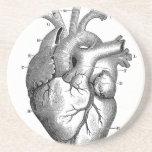 Personalizable de la anatomía el | del corazón del posavasos diseño