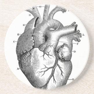 Personalizable de la anatomía el | del corazón del posavasos para bebidas