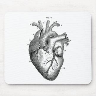 Personalizable de la anatomía el | del corazón del tapete de ratón