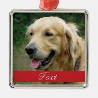 Personalizable de la foto del mascota ornamento para reyes magos